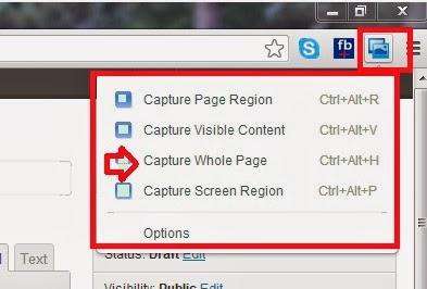 How to capture full webpage on chrome